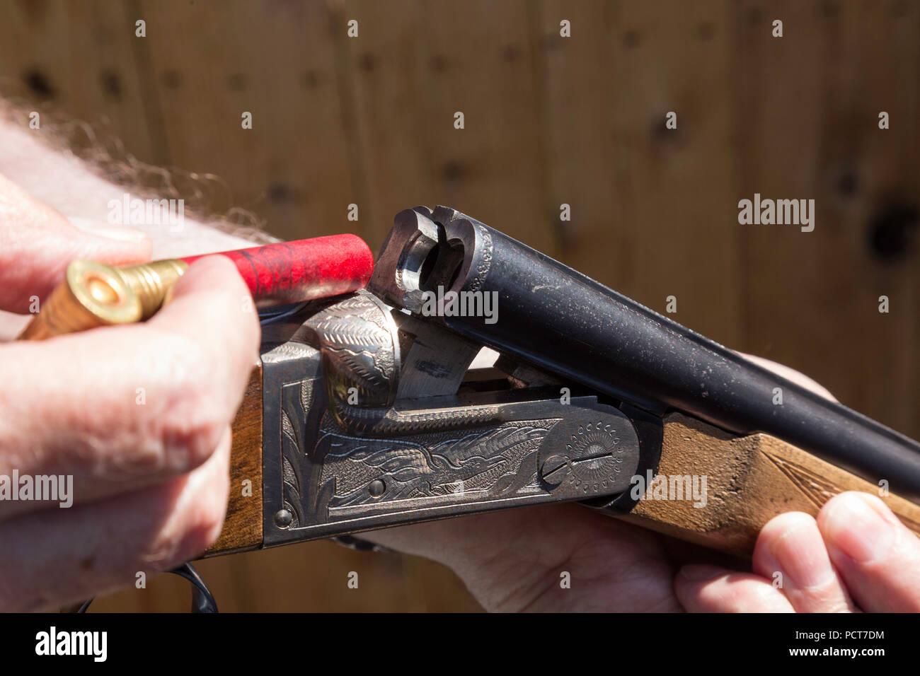 Double Barrel Gun Stock Photos & Double Barrel Gun Stock