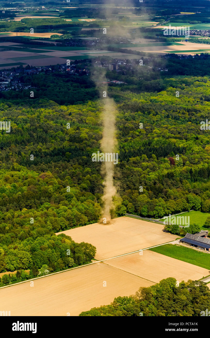 Whirlwind on a field near Mönchengladbach, small tornado - Stock Image