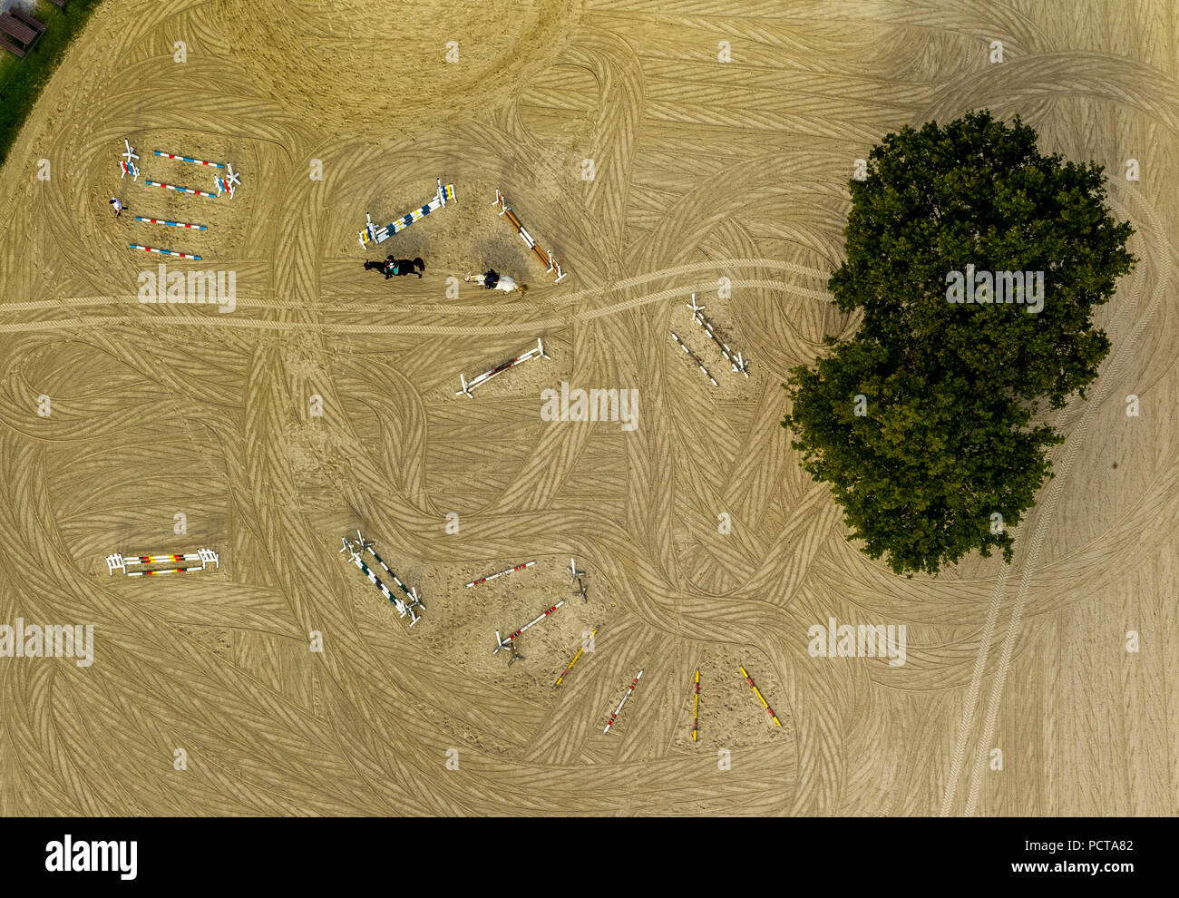 Riding arena with deciduous tree, obstacles for riding horses, sand jumping course, Halver, South Westphalia, North Rhine-Westphalia, Germany - Stock Image