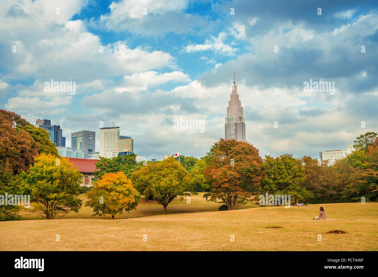 Nature and urban, environment in Tokyo. Shinjuku district skyscrapers seen from Meiji Jingu public park in autumn - Stock Image