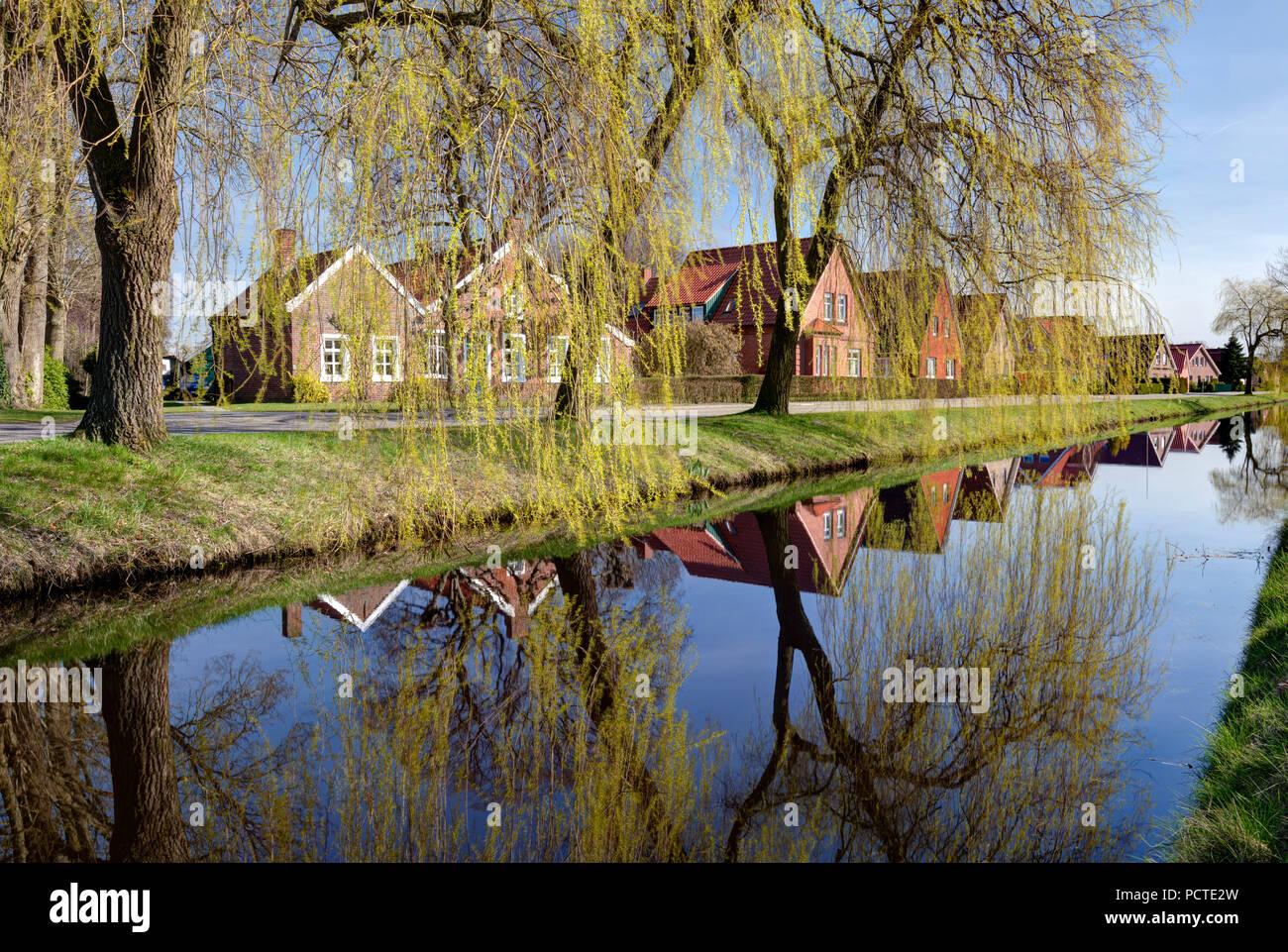 Idyll at the Wiek, Spring, Papenburg, Emsland, Lower Saxony, Germany, - Stock Image