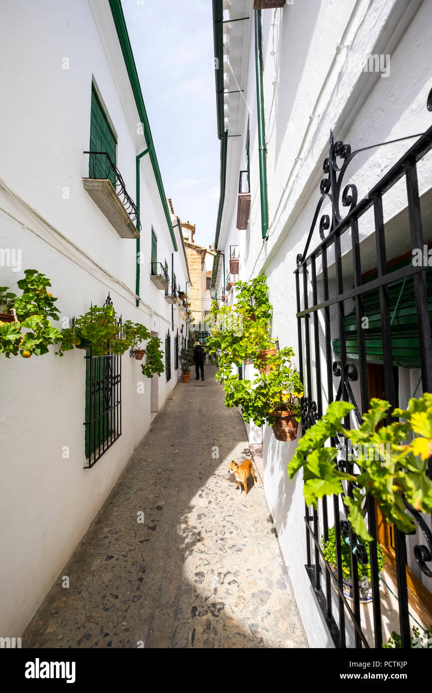 White architecture and traditional Andalusian decoration in the ...