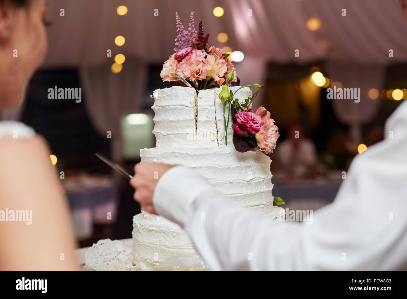 Bride and Groom at Wedding Reception Cutting the Wedding Cake - Stock Image