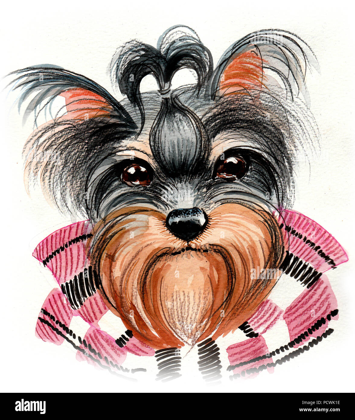 Yorkshire Terrier Dog Watercolor Illustration Stock Photo
