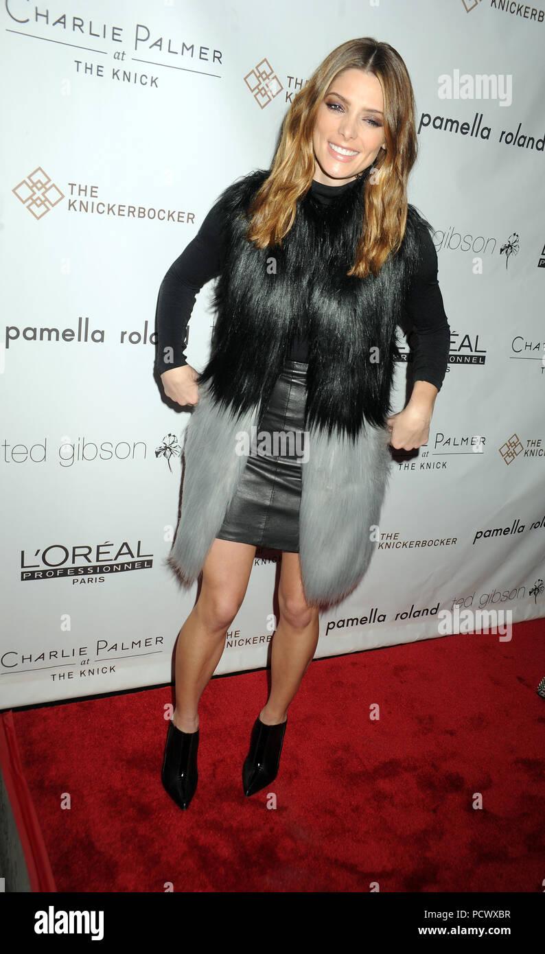 NEW YORK, NY - NOVEMBER 14: Ashley Greene  attends the Ted Gibson's 50th birthday celebration at the Knickerbocker Hotel & Rooftop on November 14, 2015 in New York City  People:  Ashley Greene Stock Photo
