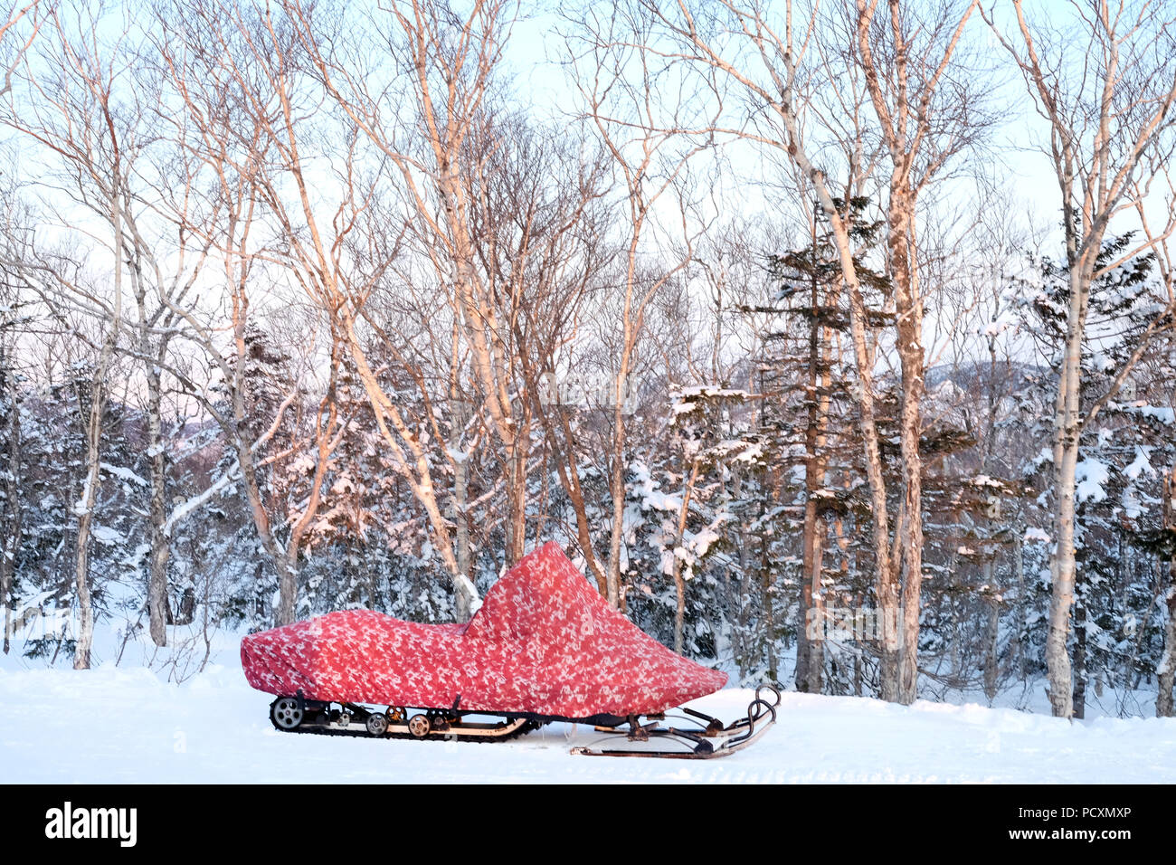 The snowmobile in the snowy forest in front of trees - Stock Image
