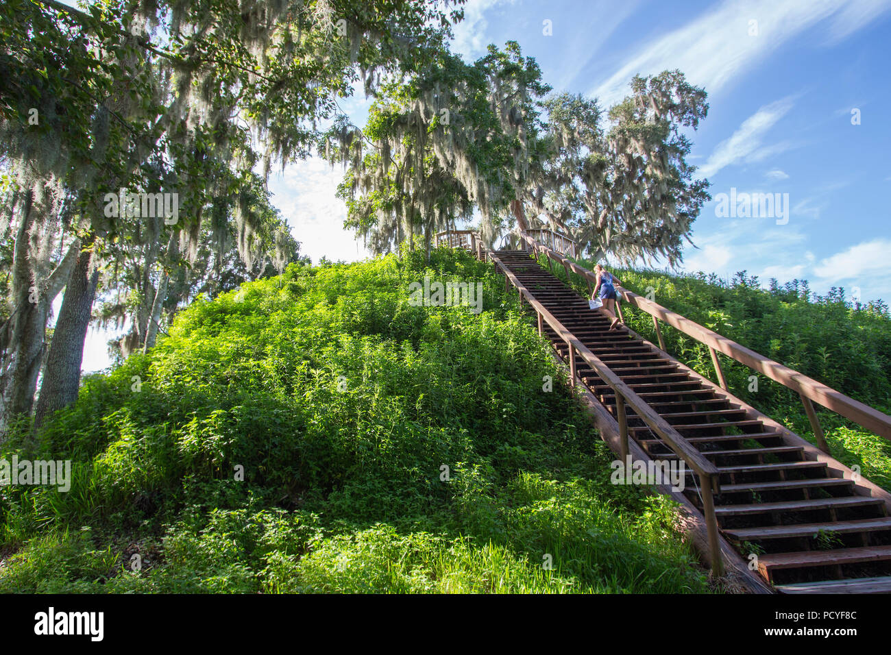 Crystal River Archaeological State Park, Temple Mound. - Stock Image