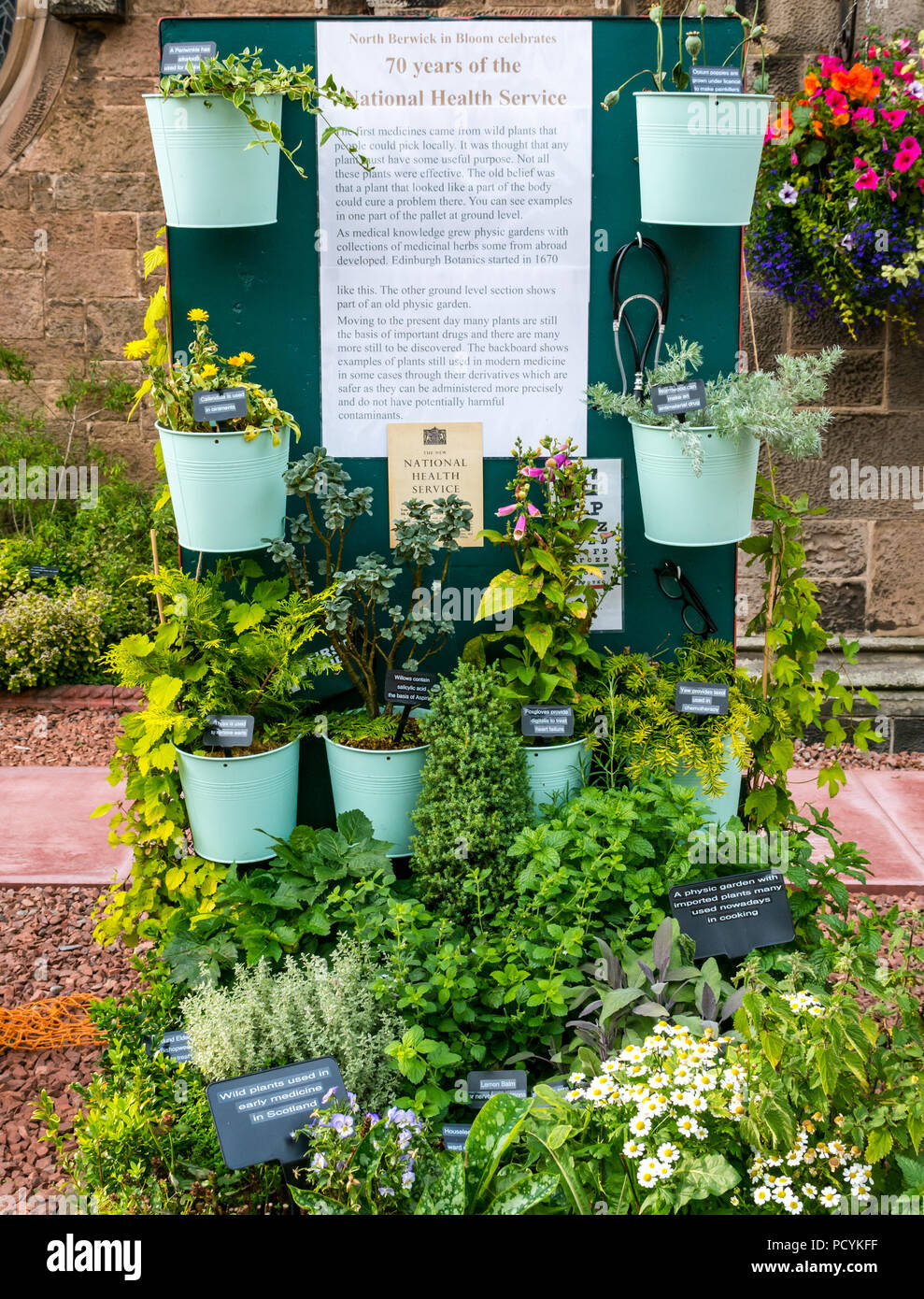Floral display medicinal plants celebrating 70 years of the National Health Service, Abbey Church, North Berwick in Bloom, East Lothian, Scotland, UK - Stock Image