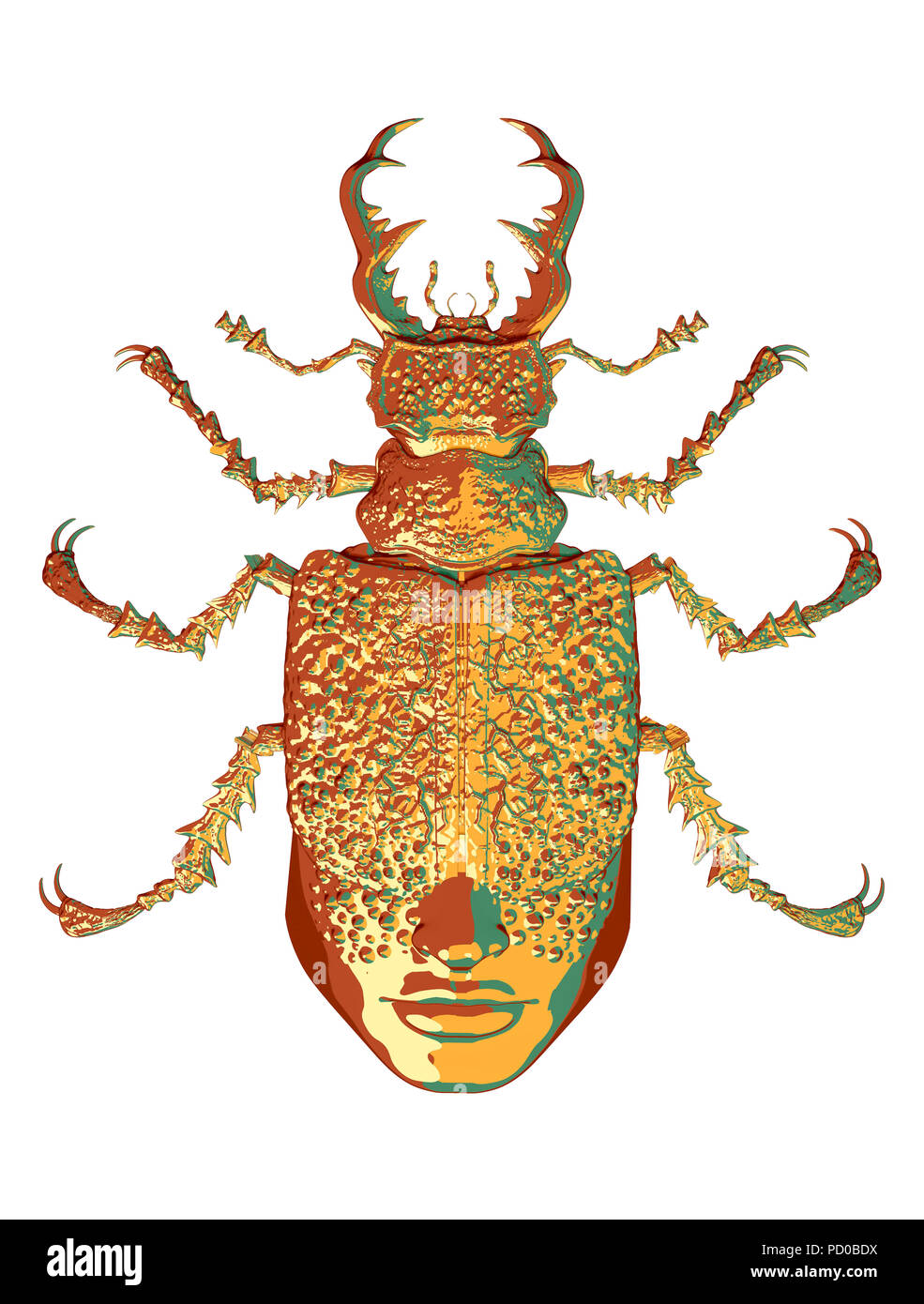 graphics mysticism,  insects, beetles - Stock Image