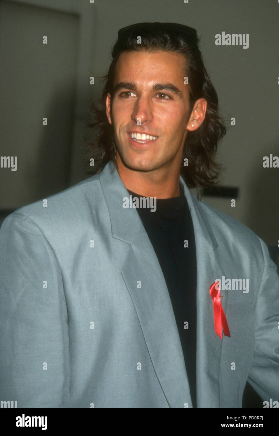 Dan pictures cortese