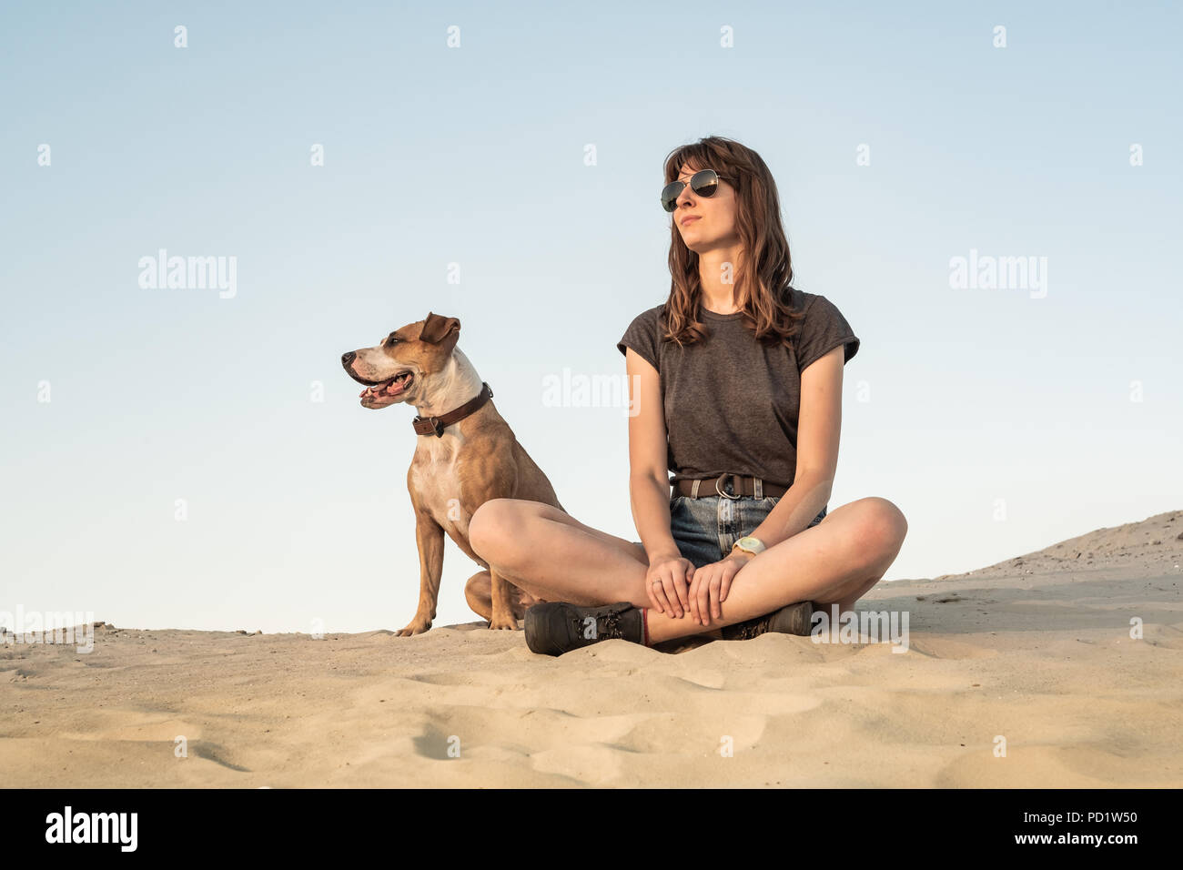 Beautiful young woman in sunglasses with dog sit on sand. Girl in hiking casual clothes and staffordshire terrier puppy sitting on sandy beach or in d - Stock Image