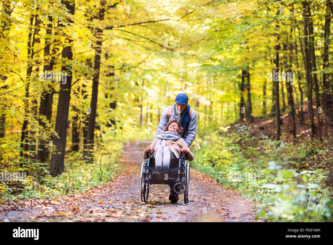 Senior couple with wheelchair in autumn forest. - Stock Image