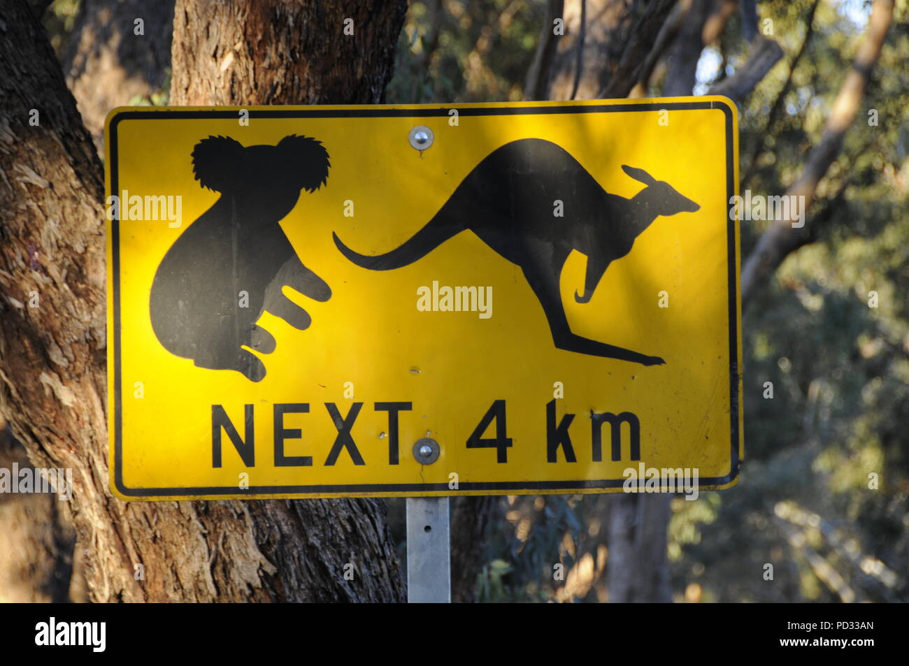 A Koala Bear And Kangaroo Road Sign In The Adelaide Hills In Adelaide South Australia State In Australia Stock Photo Alamy