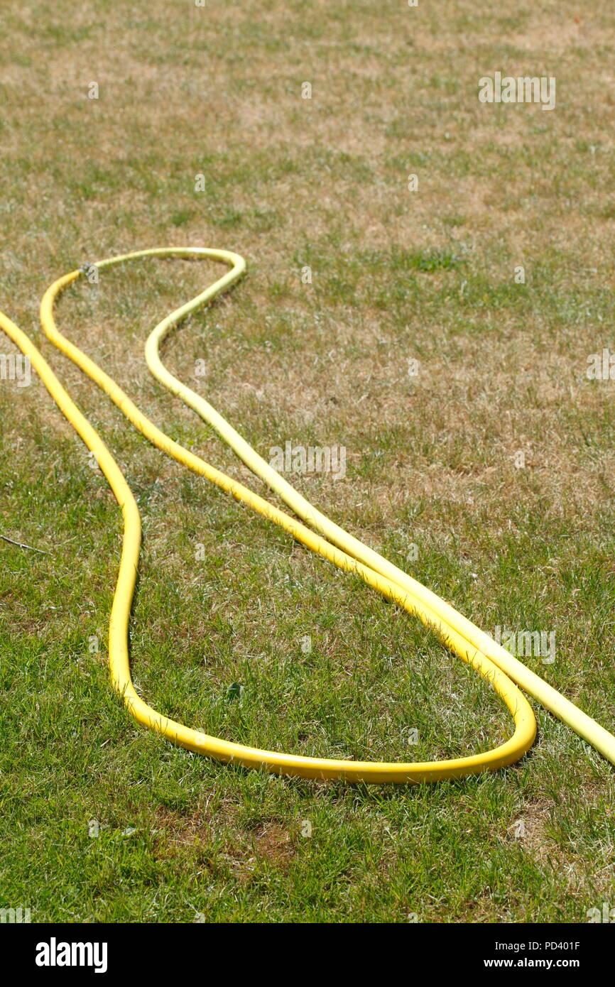 Yellow Garden Hose, Desiccated Brown Grass Field, Drought