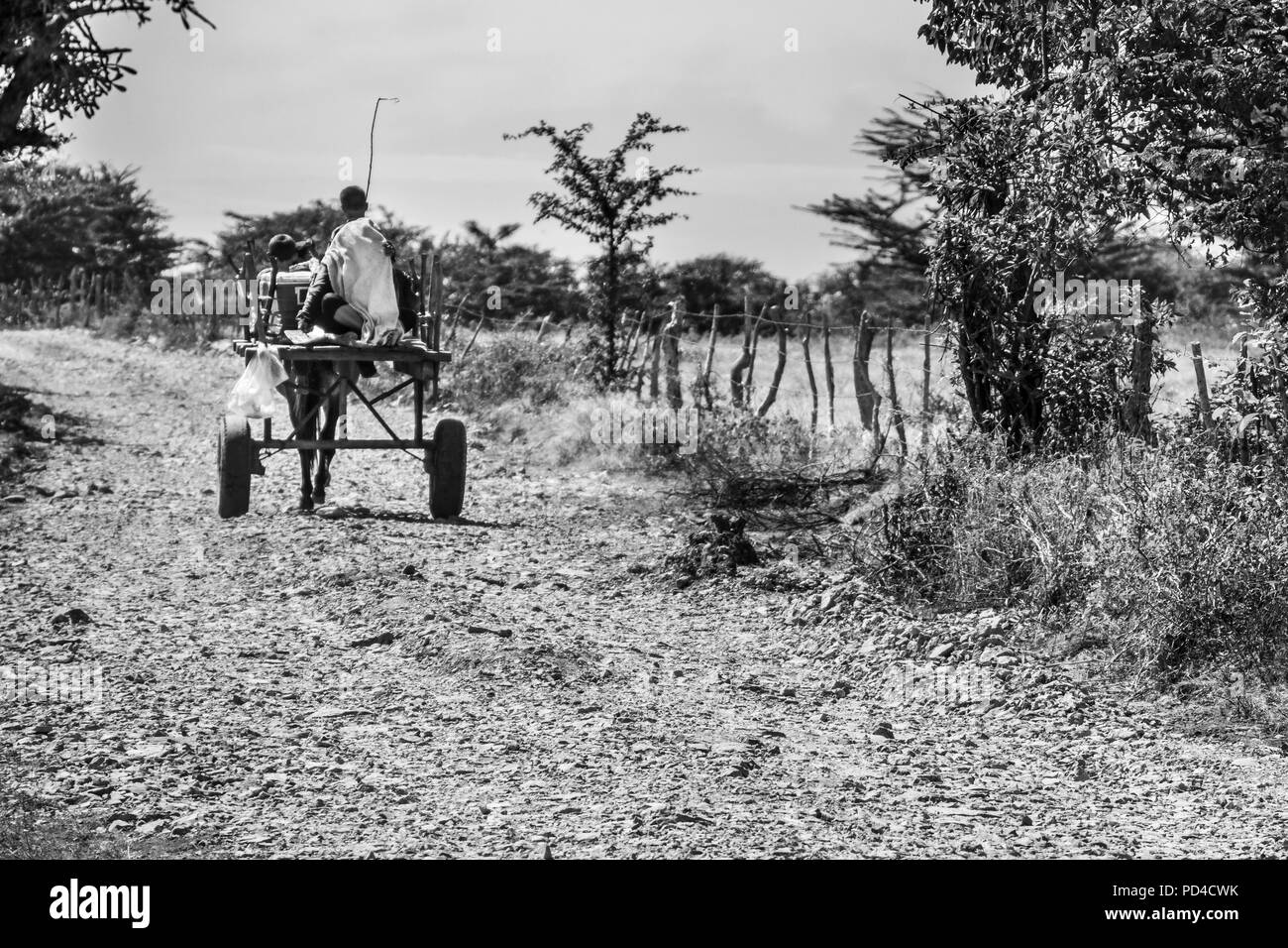 Two boys driving their carriage under and endless road. Just a poverty look from rural Honduras a beautiful country with very kindly people, Choluteca Stock Photo