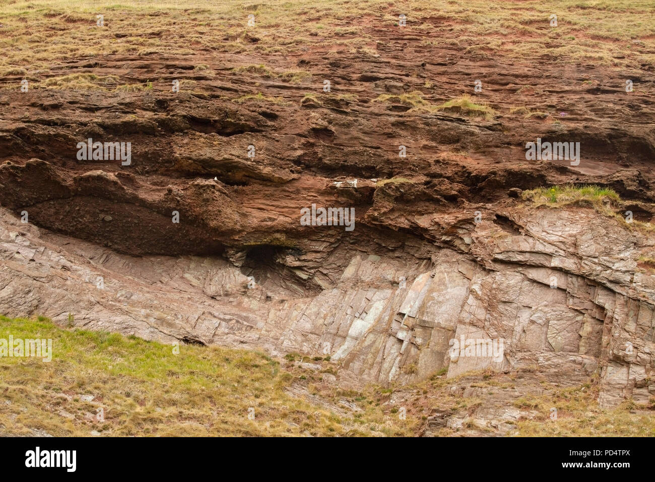 view of Hutton's unconformity at Siccar Point, near Edinburgh, Scotland - Stock Image