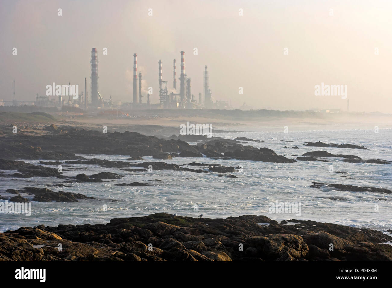 Oil refinery near the sea in a mysty evening - Stock Image