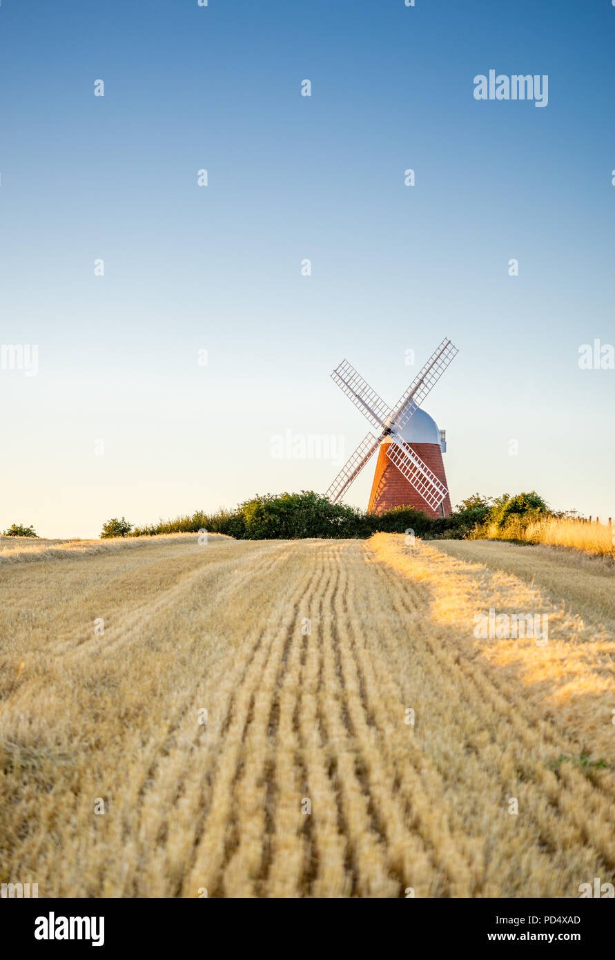 Halnaker Windmill during warm evening light on top of Halnaker Hill in West Sussex, England, UK Stock Photo