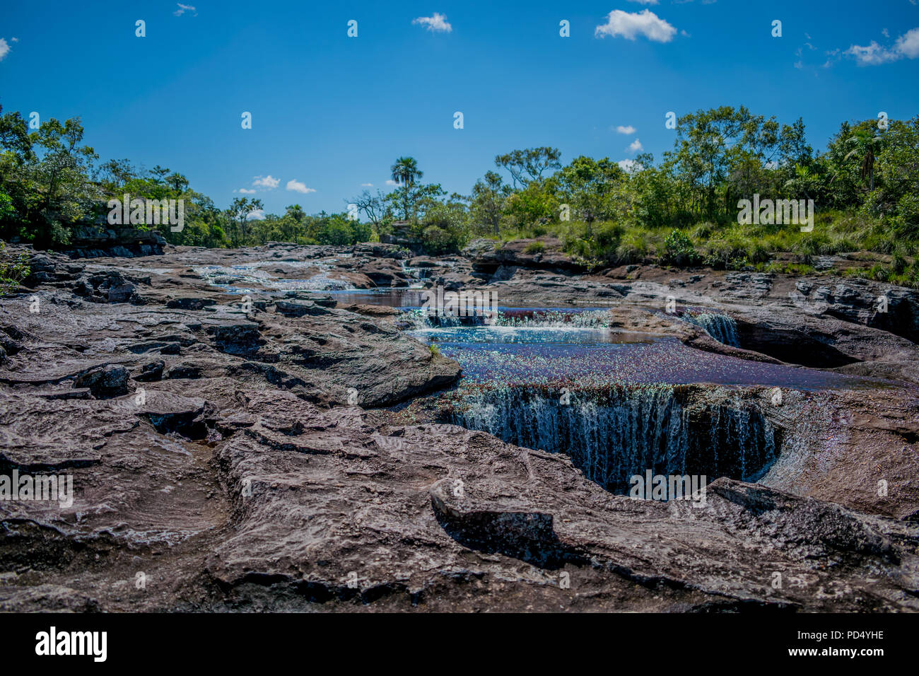 Caño Cristales, the most colorful colombian river. - Stock Image