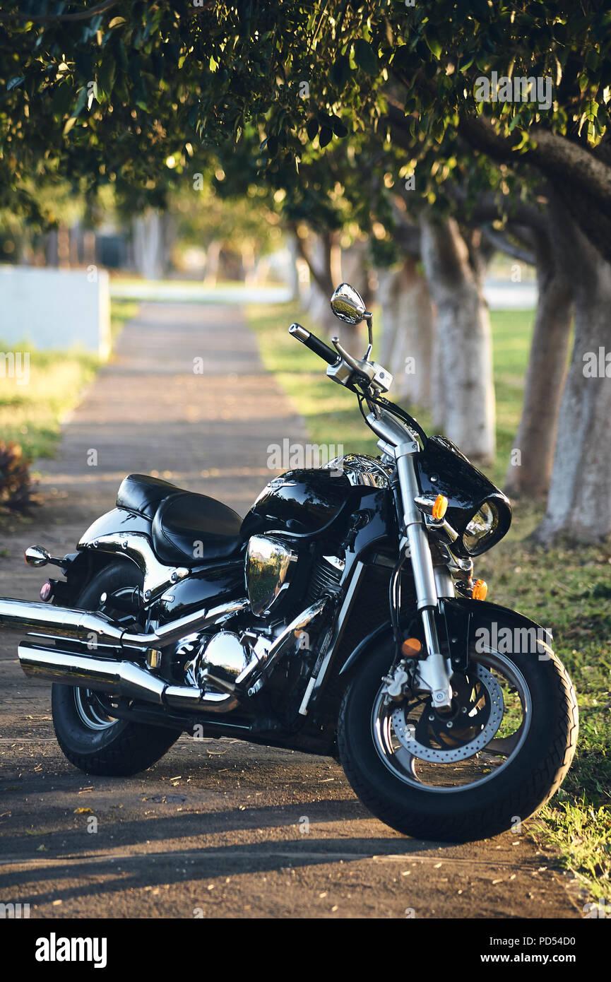 MERIDA, YUC/MEXICO - FEB 12, 2017: Suzuki Boulevard M50 motorcycle 805cc V-Twin engine, outdoor - Stock Image