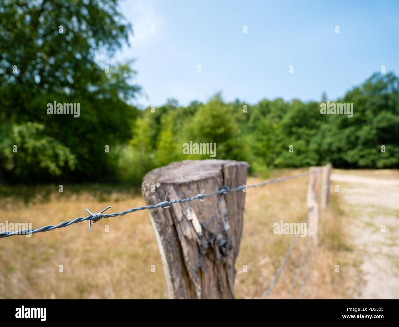 Barb wire with selective focus on foreground at day. - Stock Image