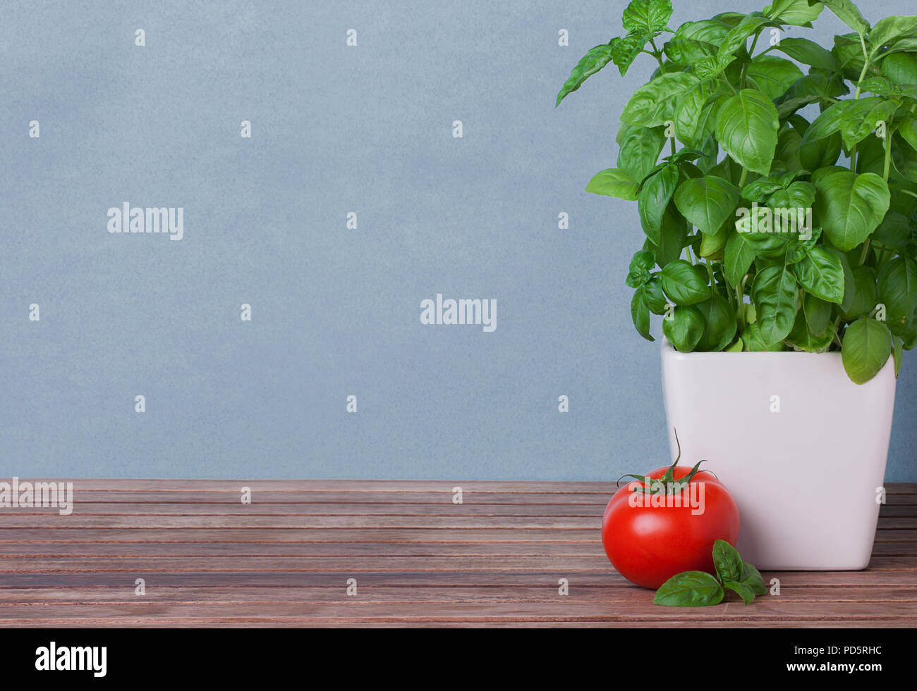 template for presentation basil and tomato on a wooden table stock