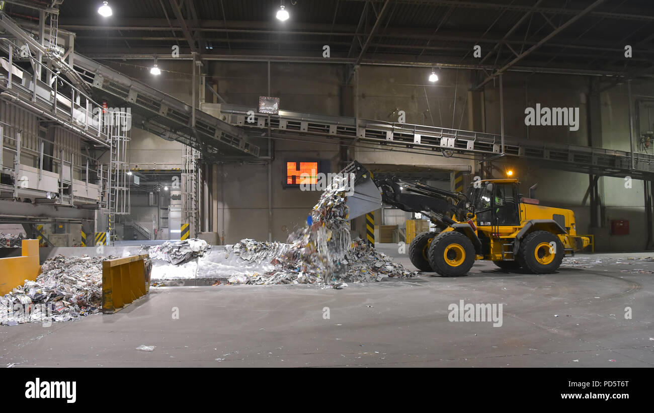 Wheel loader transports waste paper for recycling in a mill - paper production in a mill - Stock Image