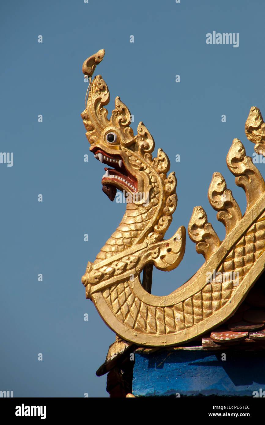 Golden dragon khmer thai sustanon 250 balkan pharmaceuticals forum