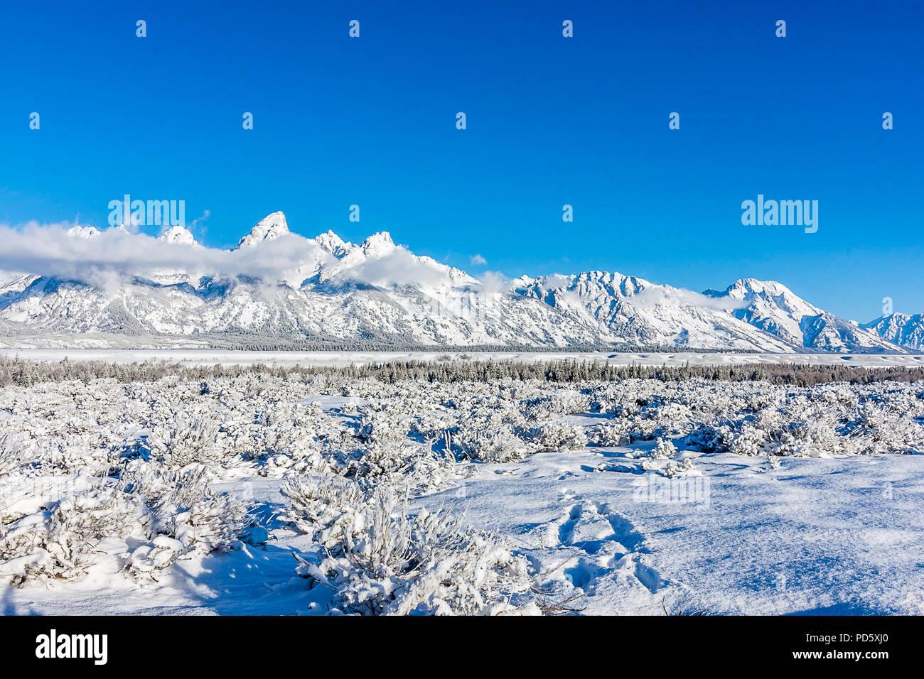 Grand Teton Mountain Range - Stock Image