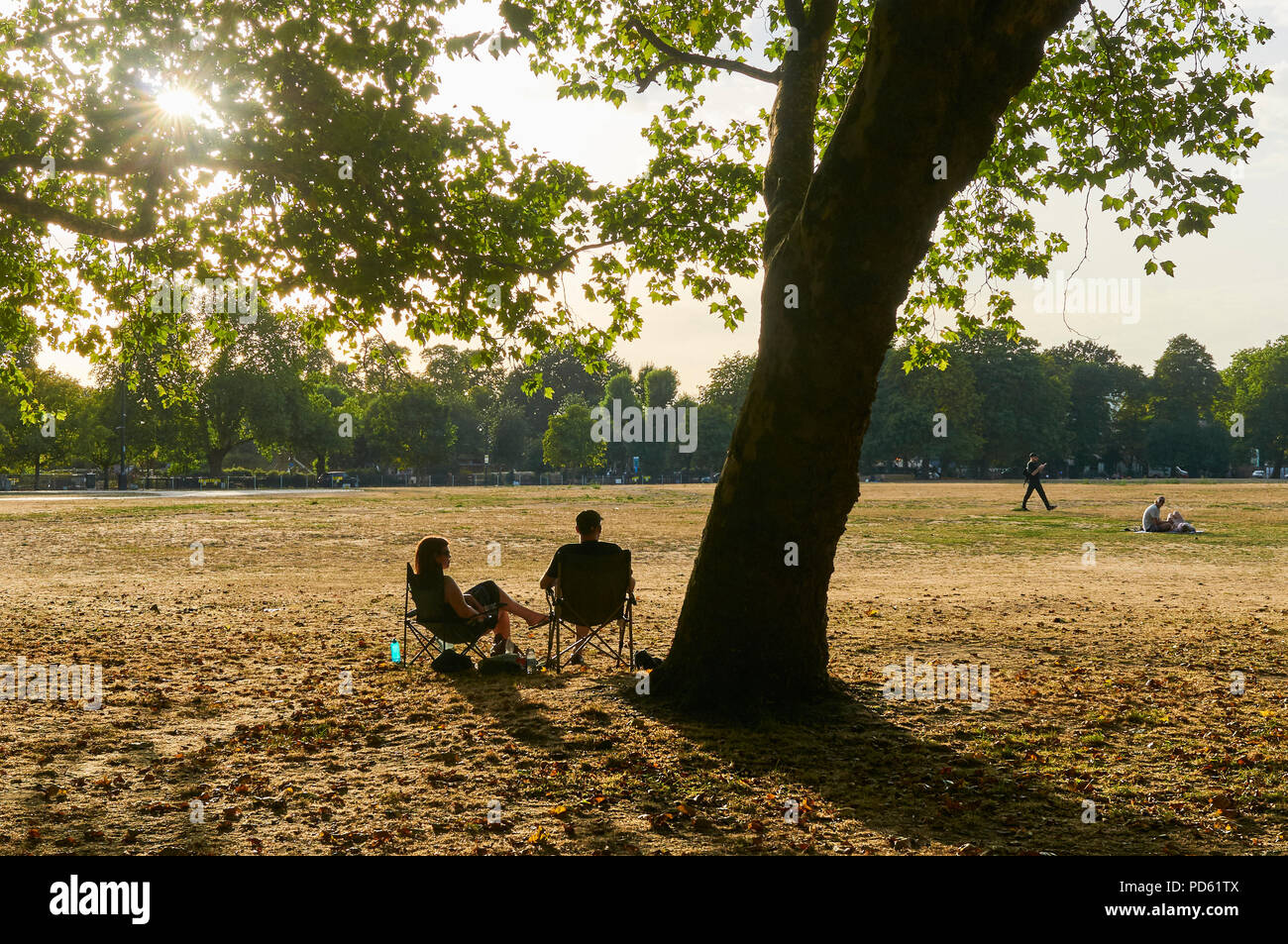 Sunbathers in Victoria Park, East London UK, in August, during the 2018 heatwave. with late afternoon sun and parched grass - Stock Image