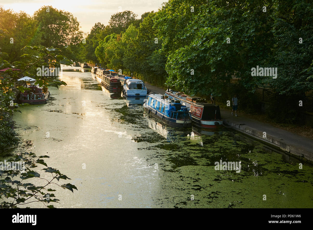 The Regents Canal at Victoria Park, East London UK, in the early evening, during the 2018 heatwave - Stock Image