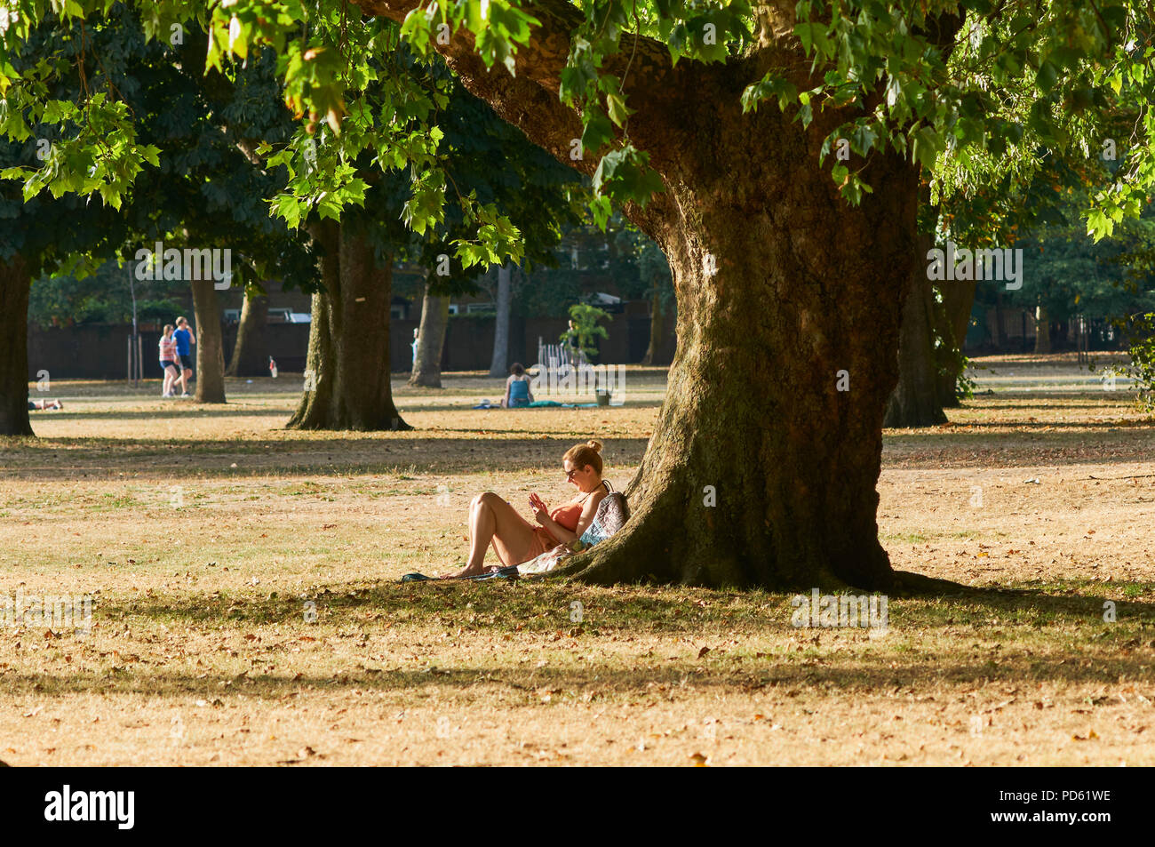 Sunbather in Victoria Park, East London UK, in early August, during the 2018 heatwave Stock Photo
