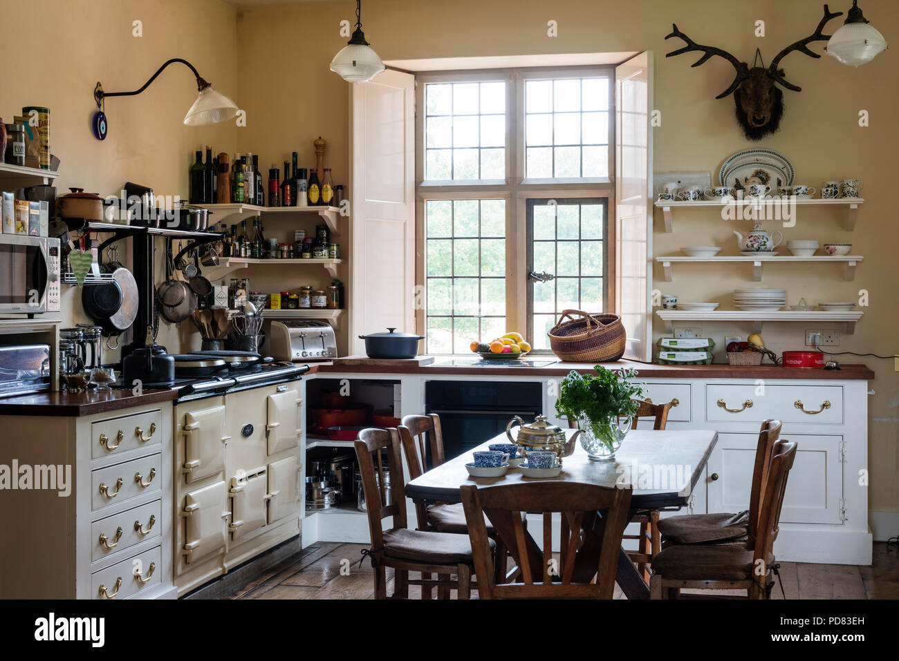Cream Aga in country style kitchen with cabinets by Kitt Rae-Scott and mounted stag head Stock Photo