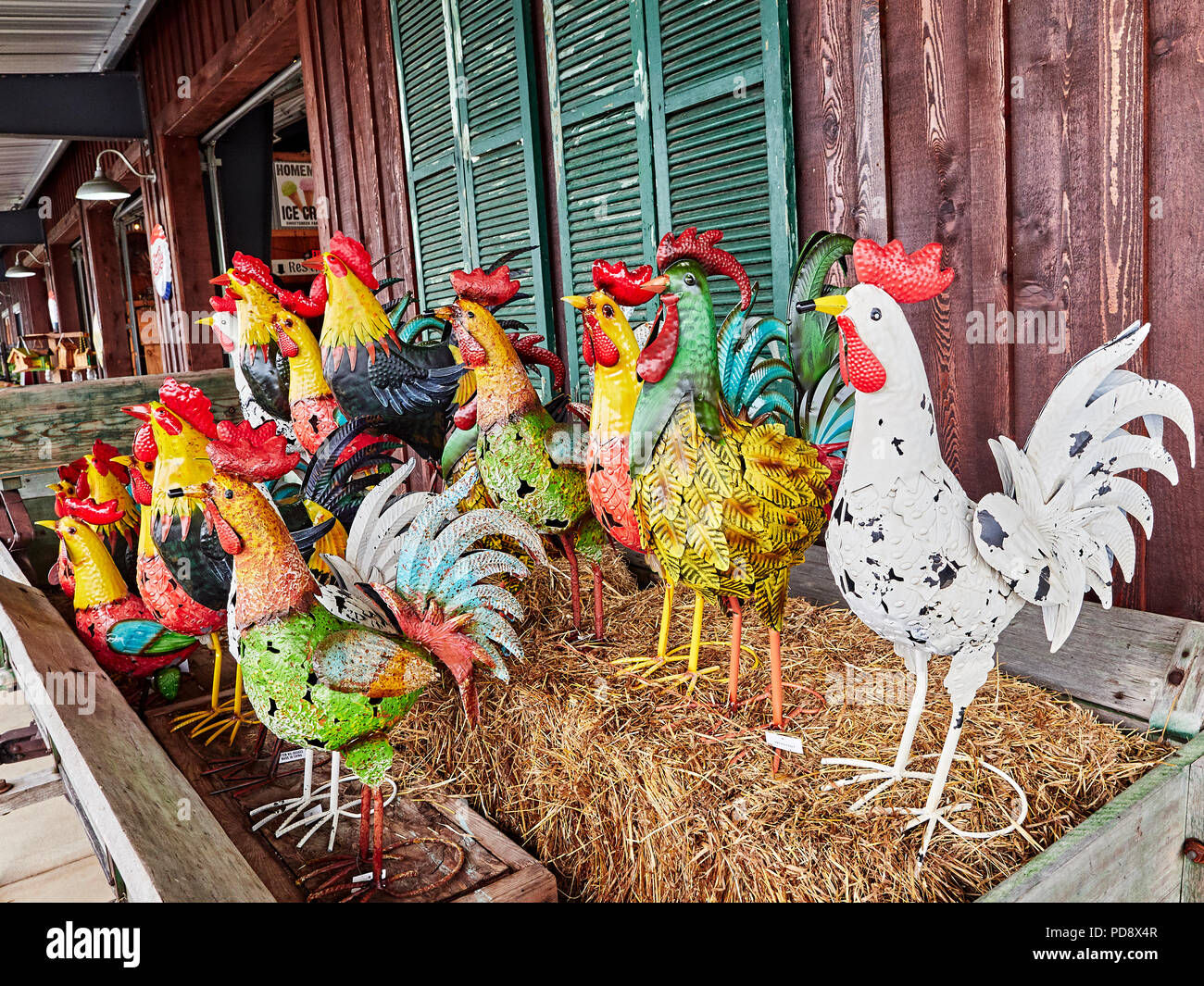 Roosters Stock Photos Roosters Stock Images Alamy