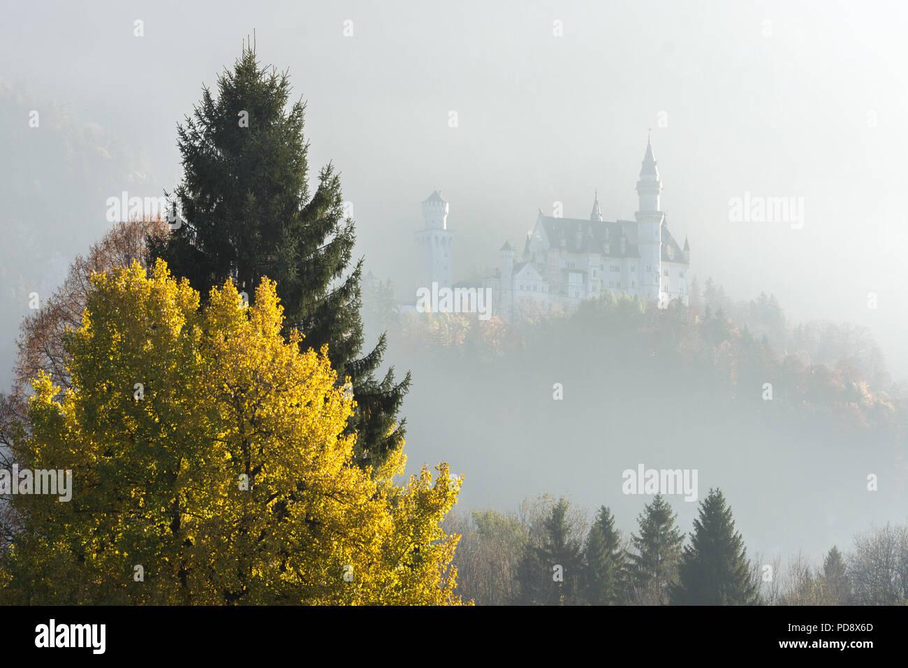Castle Neuschwanstein in mysterious light Stock Photo