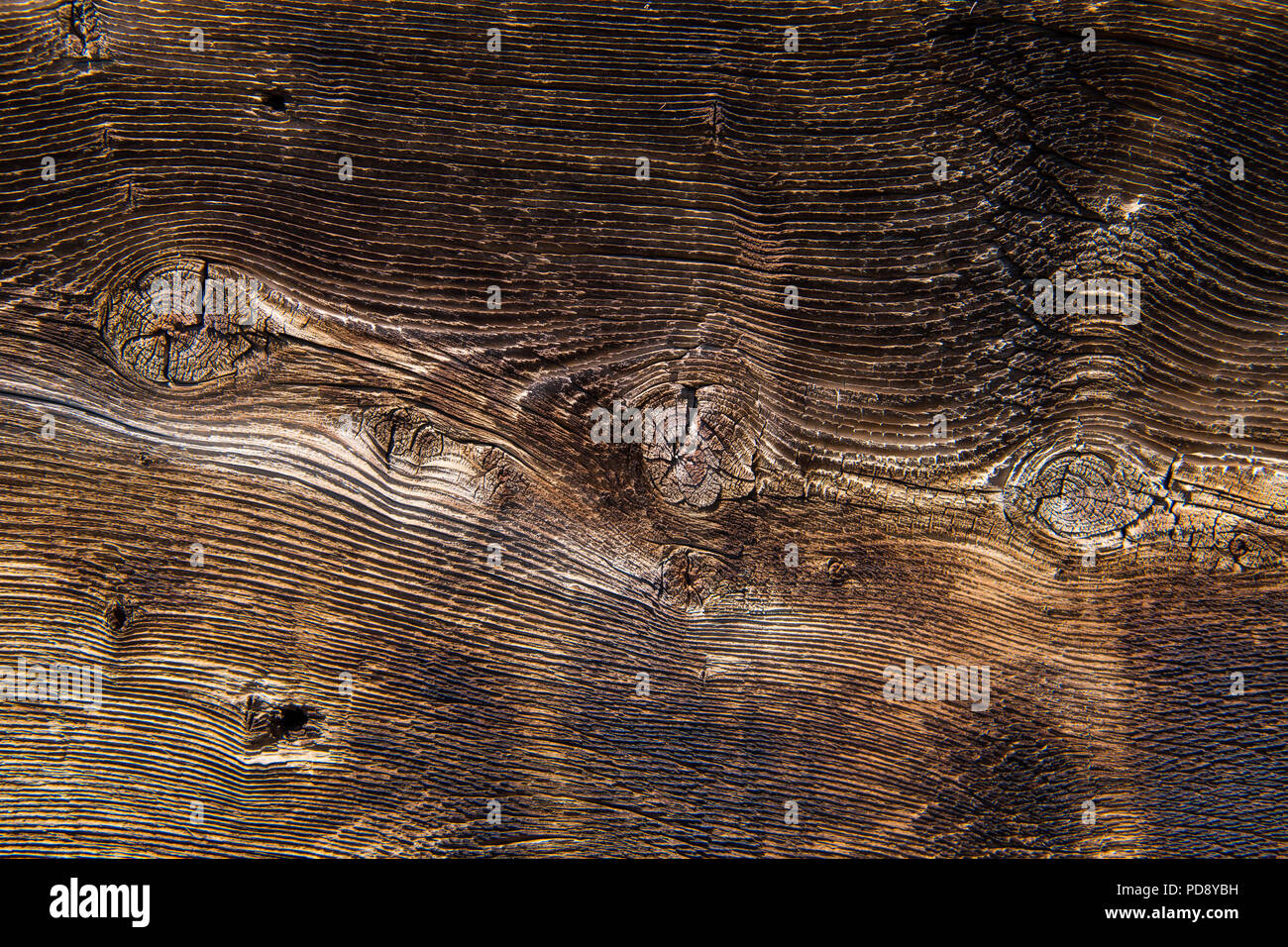 Close-up view of wood grain and wood knots background texture with warm brown color tones - Stock Image