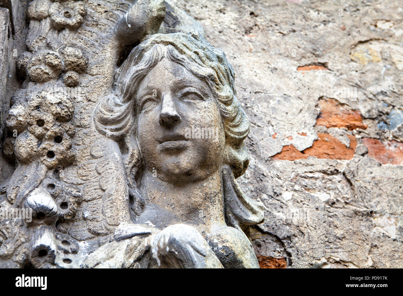 Detail of a medieval castle gate - Stock Image