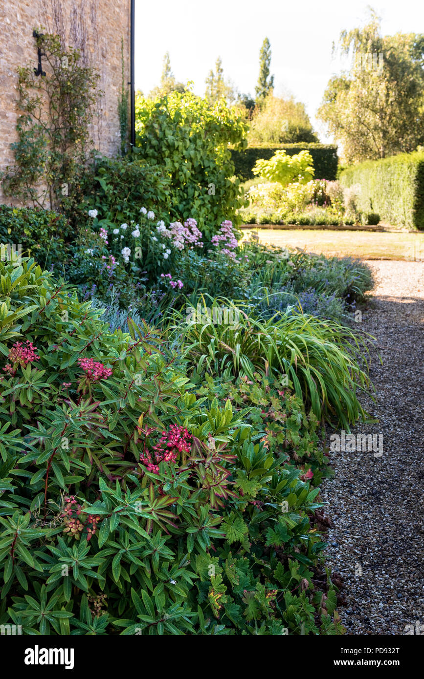 Planted bed in garden Stock Photo