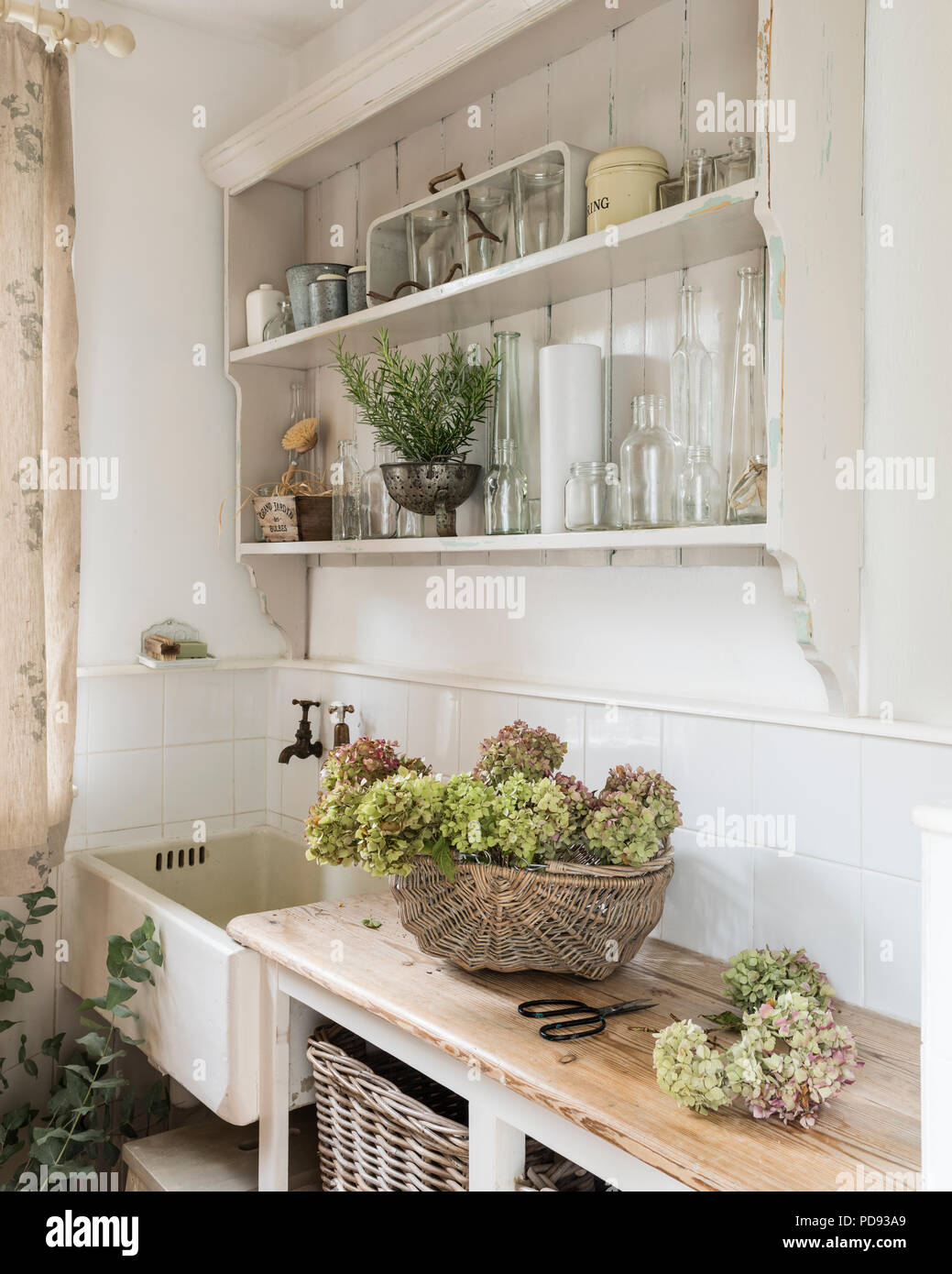 Dried hydrangea heads in corner of rustic style kitchen with ceramic sink and open wooden shelving - Stock Image
