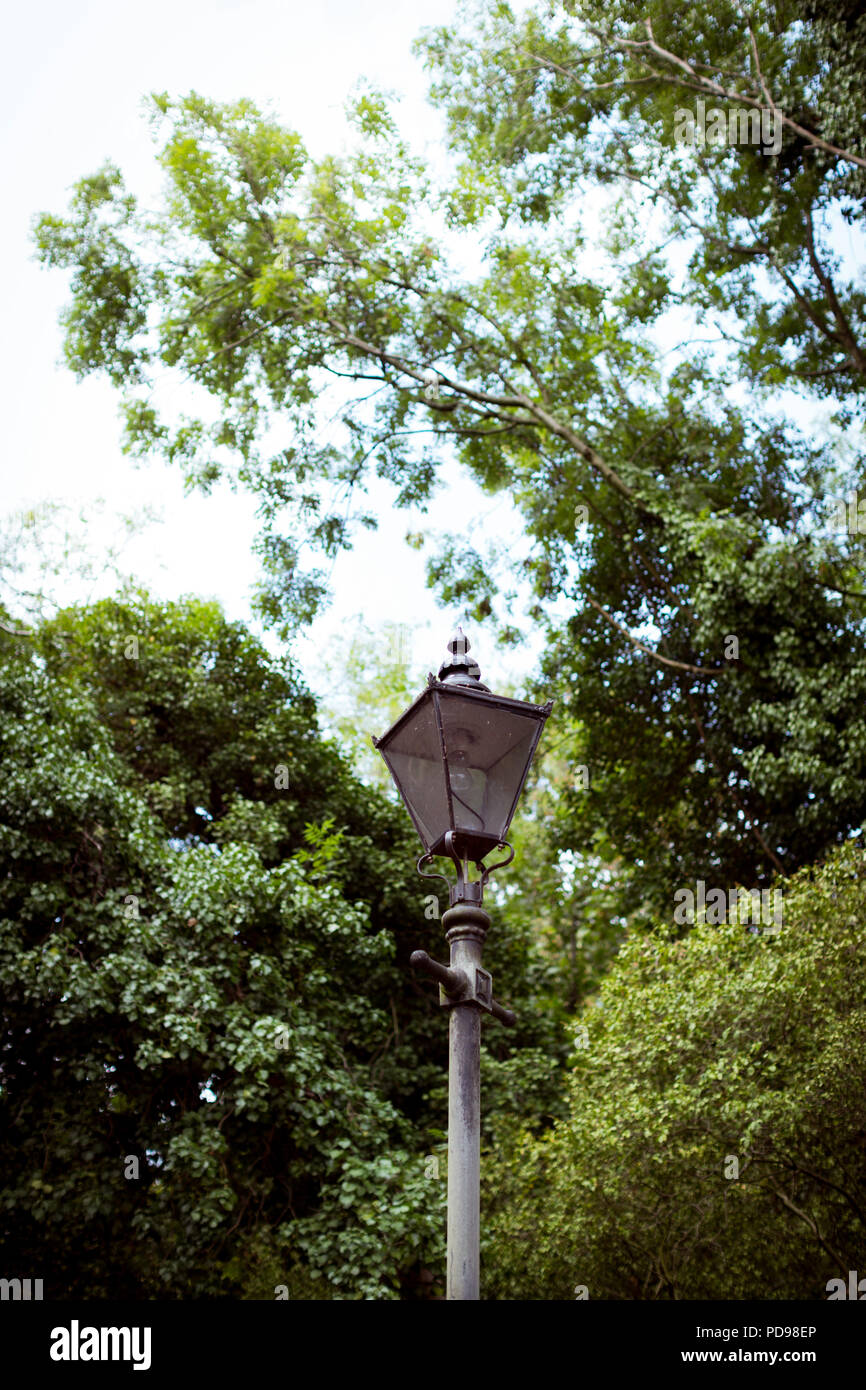 An old iron working lamp post at the Holmesdale Road entrance to the Parkland Walk, London's longest nature reserve in Haringey, North London - Stock Image