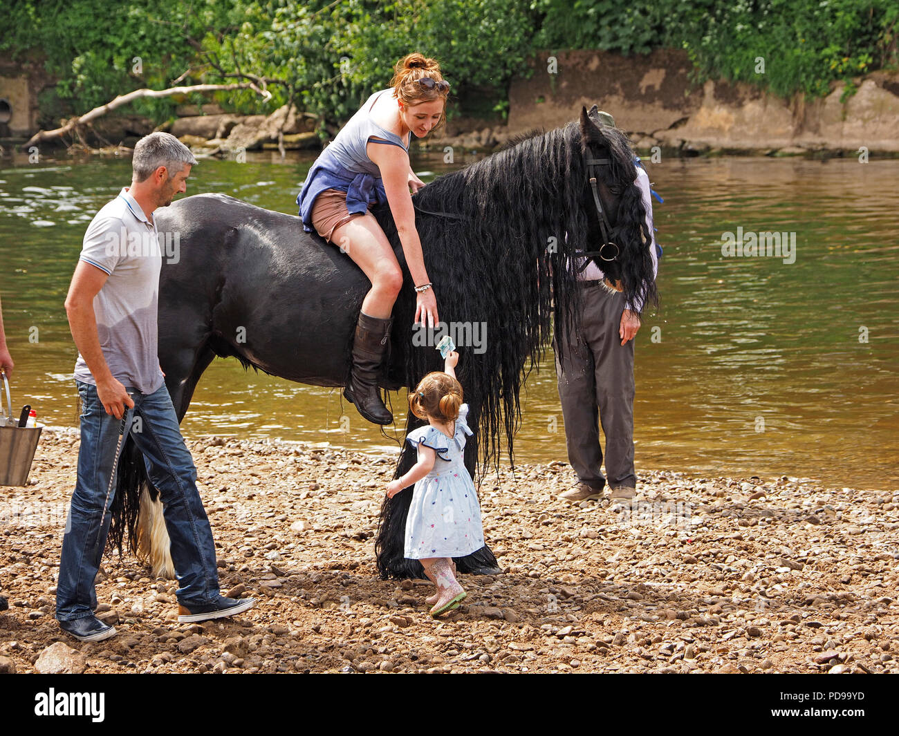 toddler passes money to mother riding black horse beside River Eden at Appleby Horse Fair in Appleby-in-Westmorland, Cumbria, England, UK - Stock Image