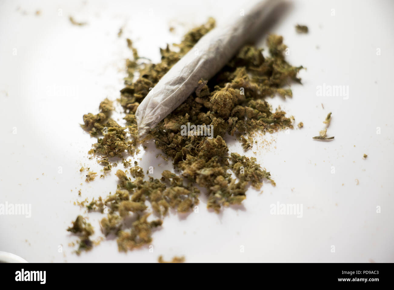 Rolled joint of weed. Marijuana used for cancer treatment. - Stock Image