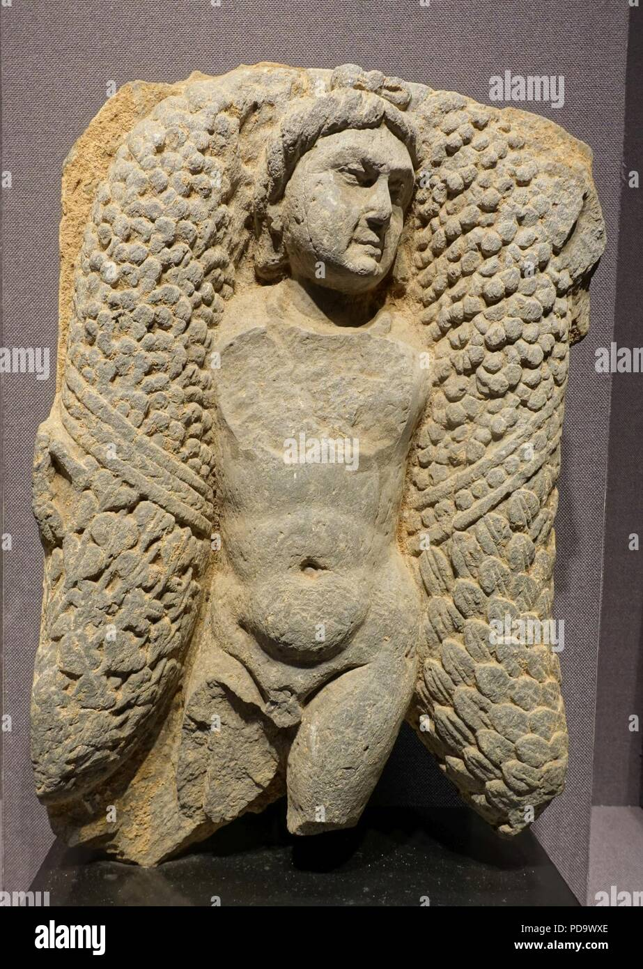 founder of kushan dynasty