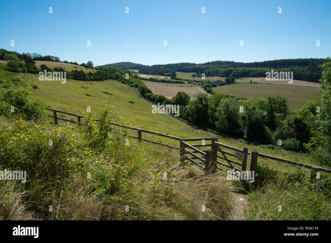 Pewley Down landscape in summer, a chalk downland site near Guildford, Surrey, UK with copy space - Stock Image