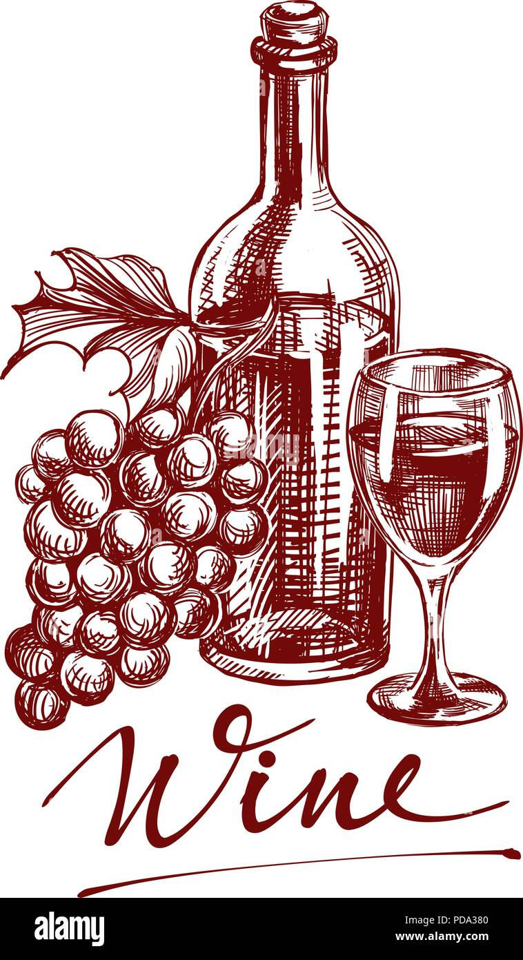 collection wine hand drawn vector llustration sketch Stock Vector