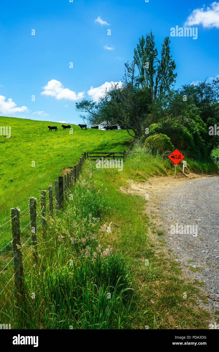 green hills, lush grass, blue sky with white clouds. on the road, forgotten world highway, new zealand - Stock Image