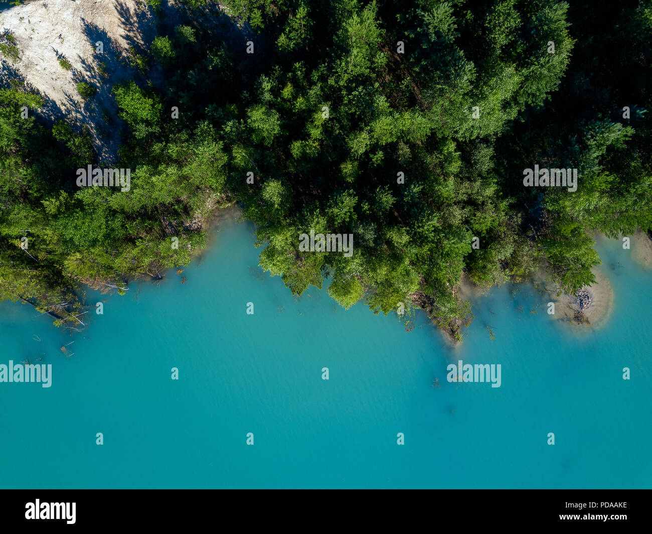 Aerial drone photo of green tree crones growing in tourquoise water of abandoned kaolin quarry, top down view, Russia - Stock Image