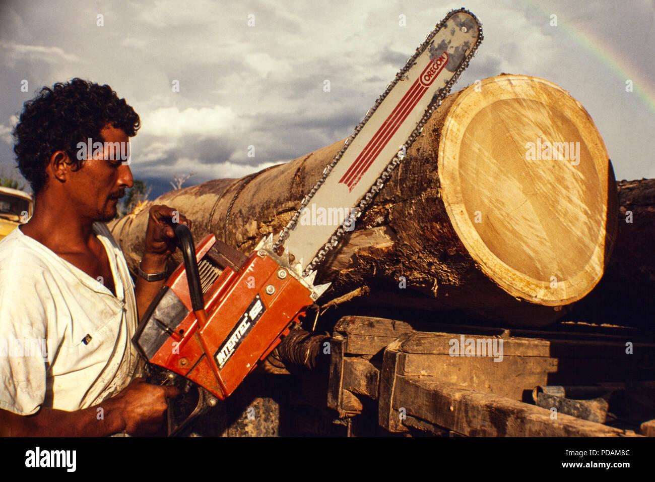 Logging, Amazon rainforest deforestation, transportation of heavy and big tree truncks, Acre State, Brazil. - Stock Image