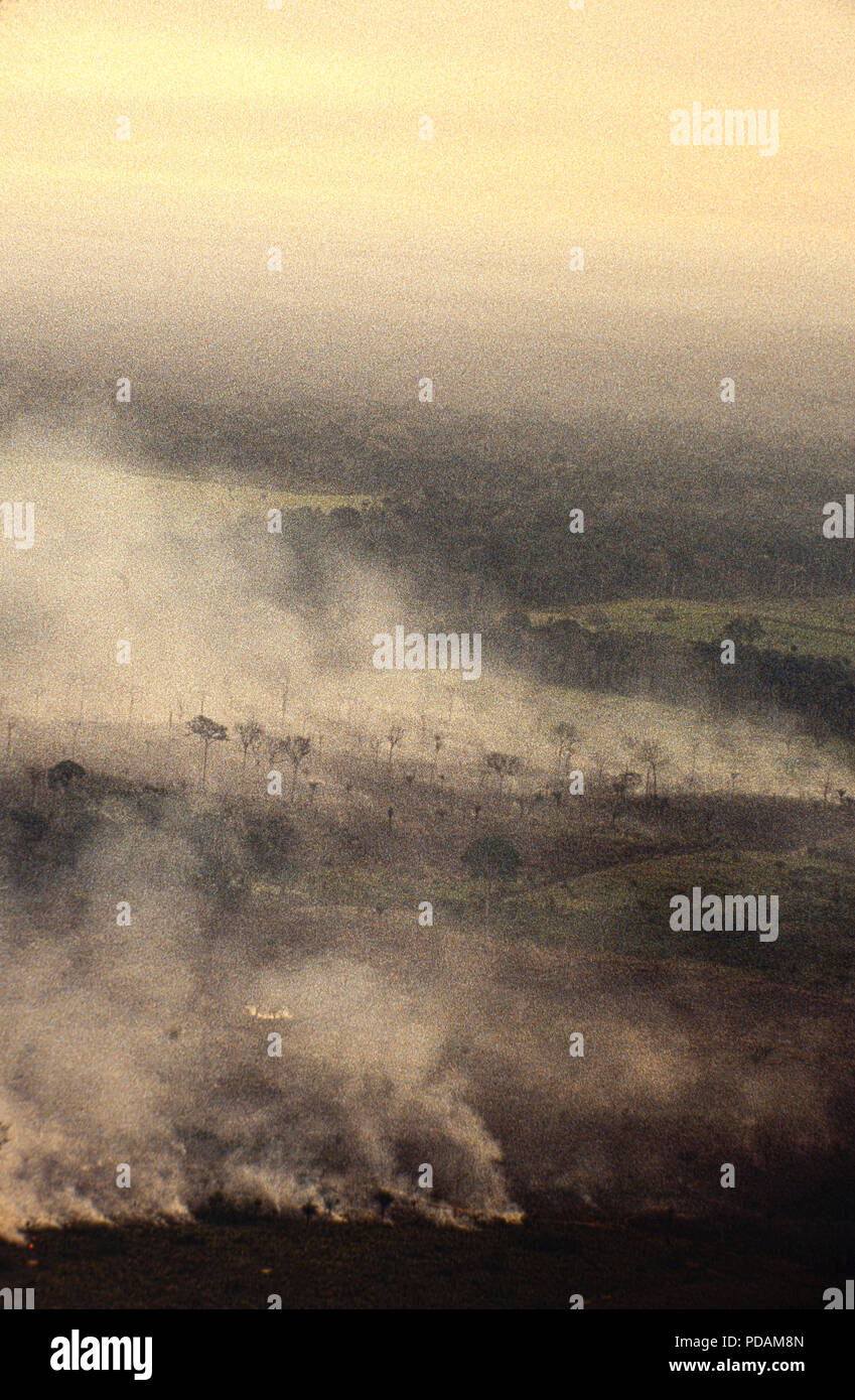 Aerial view of Amazon rainforest burning, farm management with deforestation, Acre State, Brazil. - Stock Image