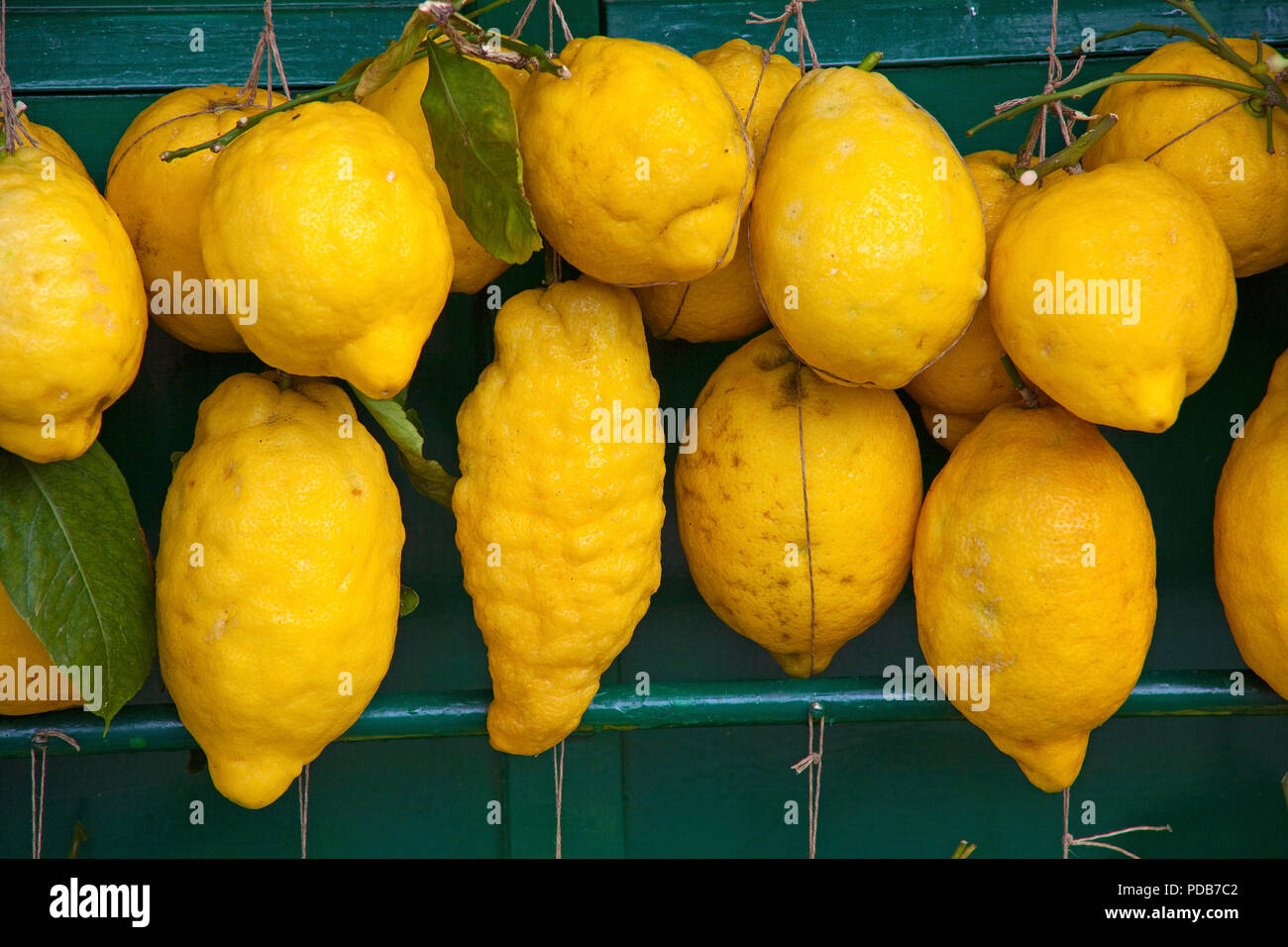 Lemons a speciality of the region, Sirmione, Lake Garda, Lombardy, Italy Stock Photo